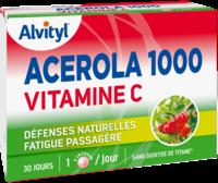 Govital Acerola 1000 à Voiron