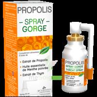 3 Chenes Propolis Spray Gorge Fl/25ml à Voiron