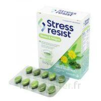 Stress Resist Comprimés Stress & Fatigue B/30 à Voiron