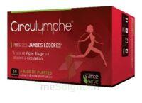 Santé Verte Circulymphe Triple Actions B/30 à Voiron