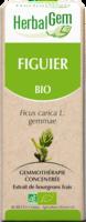 Herbalgem Figuier Macerat Mere Concentre Bio 30 Ml à Voiron