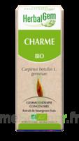 Herbalgem Charme Macérat Bio 30ml à Voiron