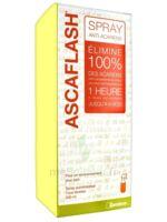 Ascaflash Spray Anti-acariens 500ml à Voiron