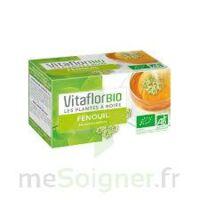 Vitaflor - Fenouil Tisane 100g à Voiron