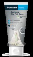 Biocanina Shampooing éclat Poils Blancs 200ml à Voiron
