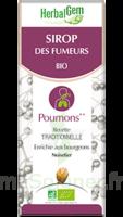Herbalgem Sirop Bio Des Fumeurs 150ml à Voiron
