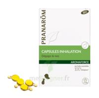 Aromaforce Caps Inhalation Bio B/15 à Voiron