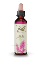 Fleurs De Bach® Original Pine - 20 Ml à Voiron