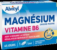 Govital Magnésium Vitamine B6 Comprimés B/45 à Voiron