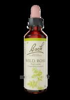 Fleurs De Bach® Original Wild Rose - 20 Ml à Voiron