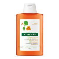 Klorane Capucine Shampooing 200ml à Voiron